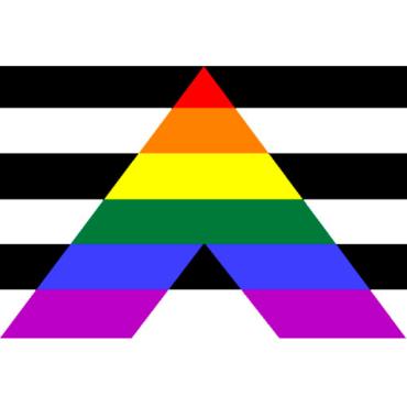 Modelo LGBT Afirmativo 1 (Dra. Frances Crespo)